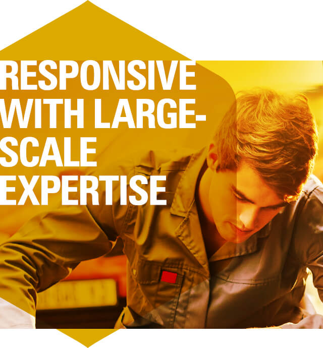 Responsive with Large-Scale Expertise